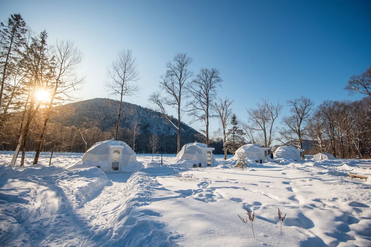 winterg- (3)